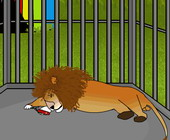 Escape Lion Cage